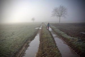 Schwarzwald Feldweg im Nebel